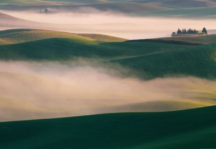 Photo wallpapers Foggy Hills | Shop online